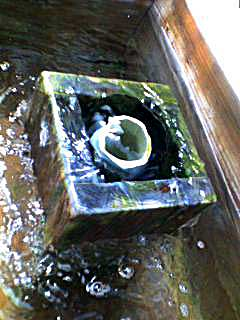 080531 稲取の文化公園の足湯