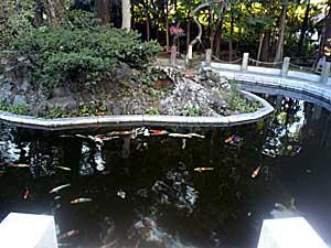 090102 池(六所神社)